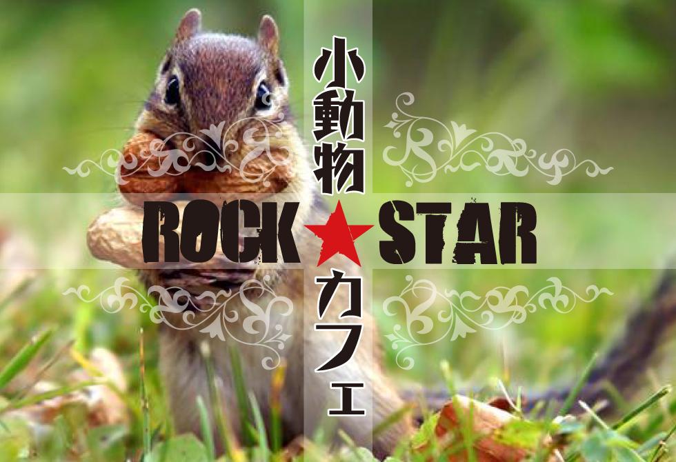 小動物カフェ ROCK STAR